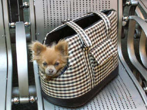 small dog carrier - doggy bag